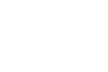 Official Selection Boston International Film Festival